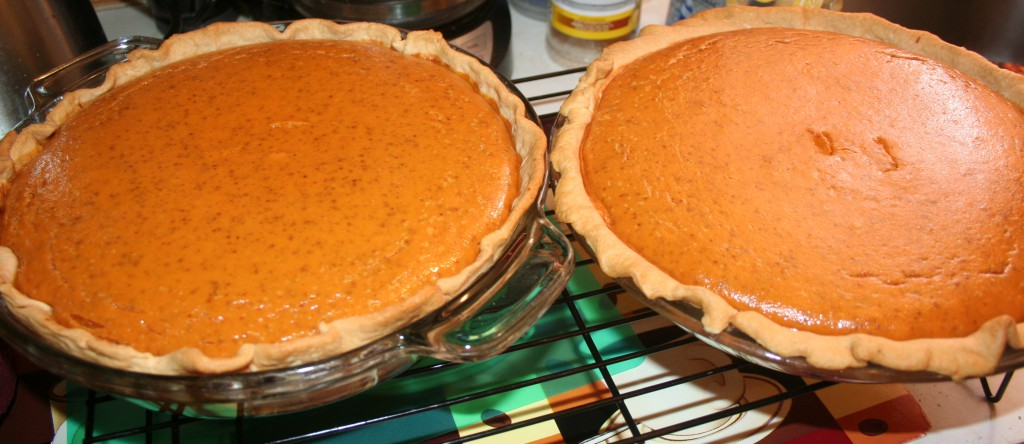 Pumpkin Pies ~ LifeOfJoy.me