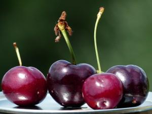 Cherry Month ~ LifeOfJoy.me