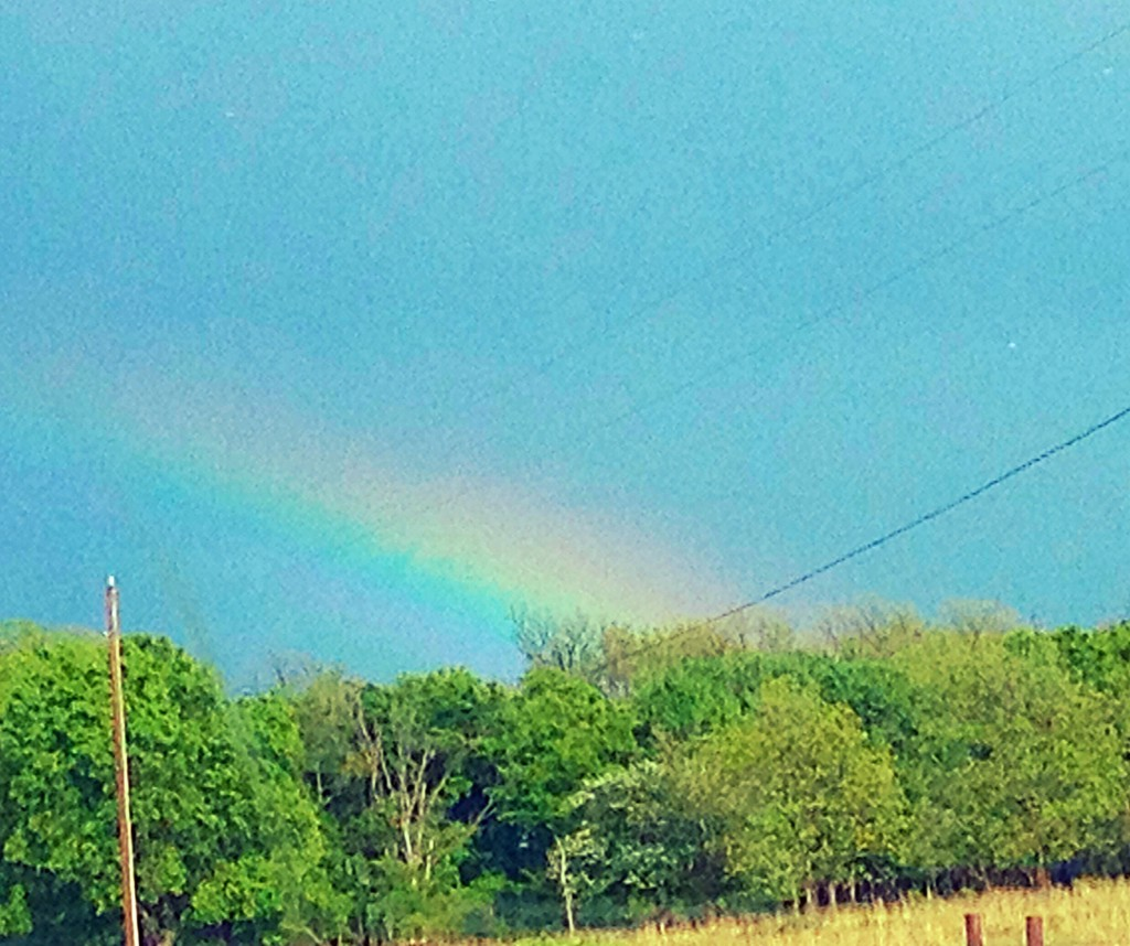 Rainbow ~ LifeofJoy.me