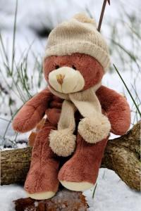 Cinnamon Bear ~ Lifeofjoy.me