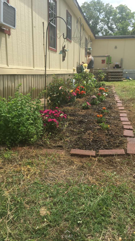My flower bed ~ lifeofjoy.me