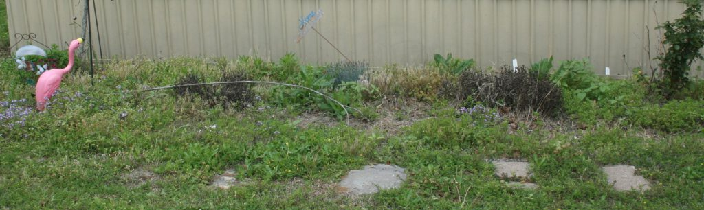 Flower bed before ~ Lifeofjoy.me