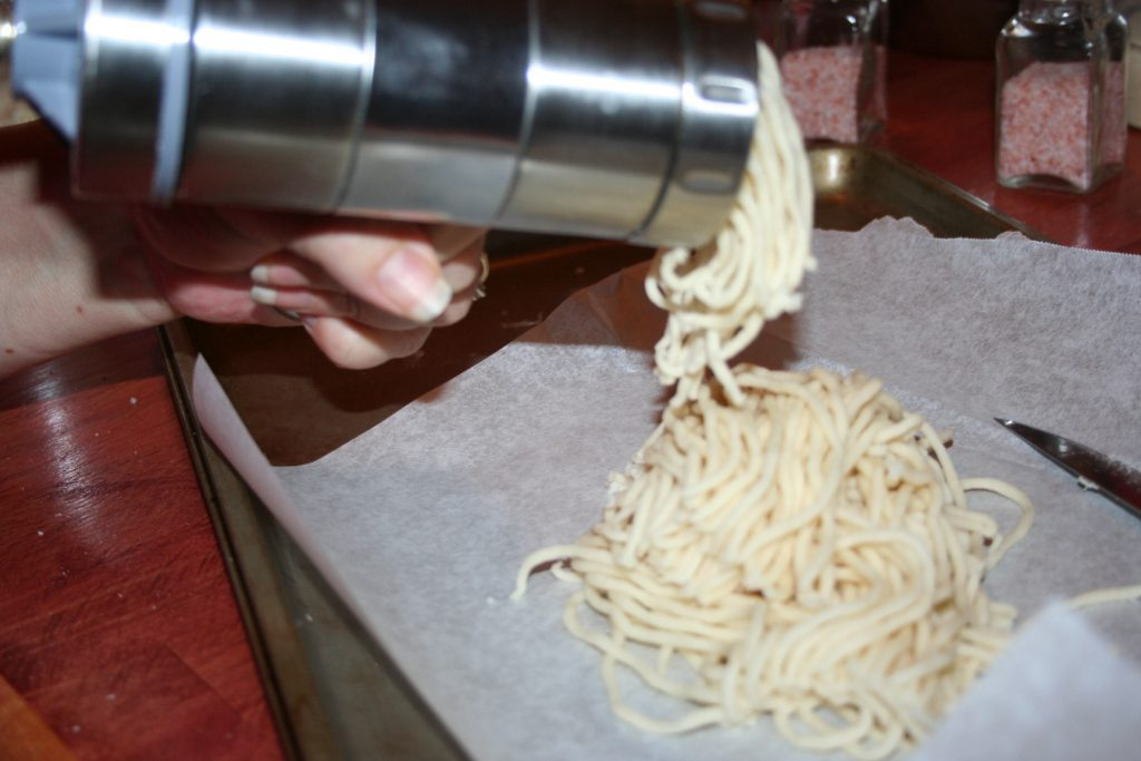 Homemade low carb noodles ~ Lifeofjoy.me