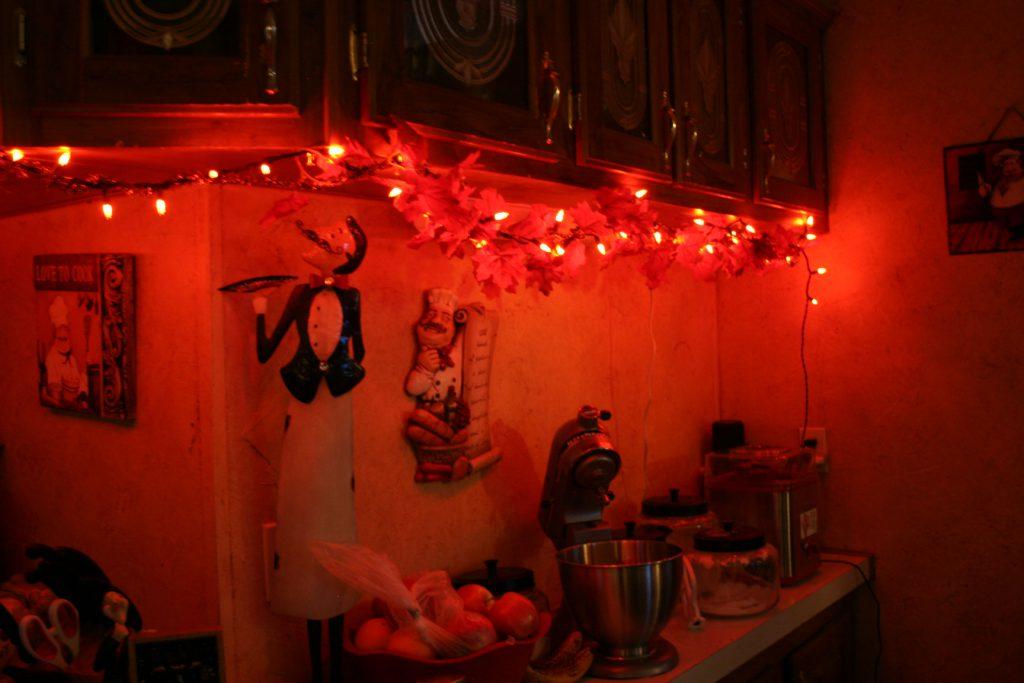 Orange lights ~ Lifeofjoy.me