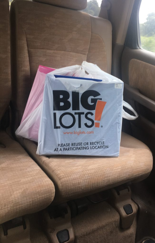 Big Lots for the score ~ Lifeofjoy.me