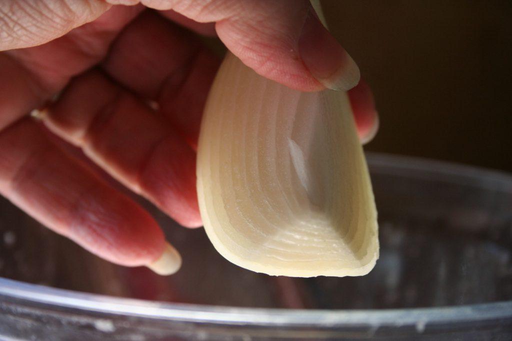 Onion wedge ~ Lifeofjoy.me