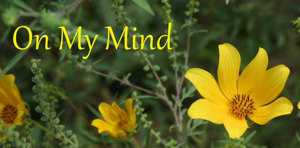 On My Mind ~ LifeOfJoy.me