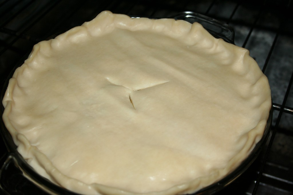 Ready for Oven ~ LifeofJoy.me