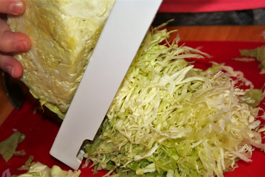 Shred Cabbage ~ Lifeofjoy.me