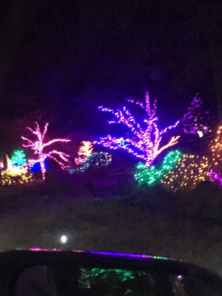 Christmas Lights ~ Lifeofjoy.me