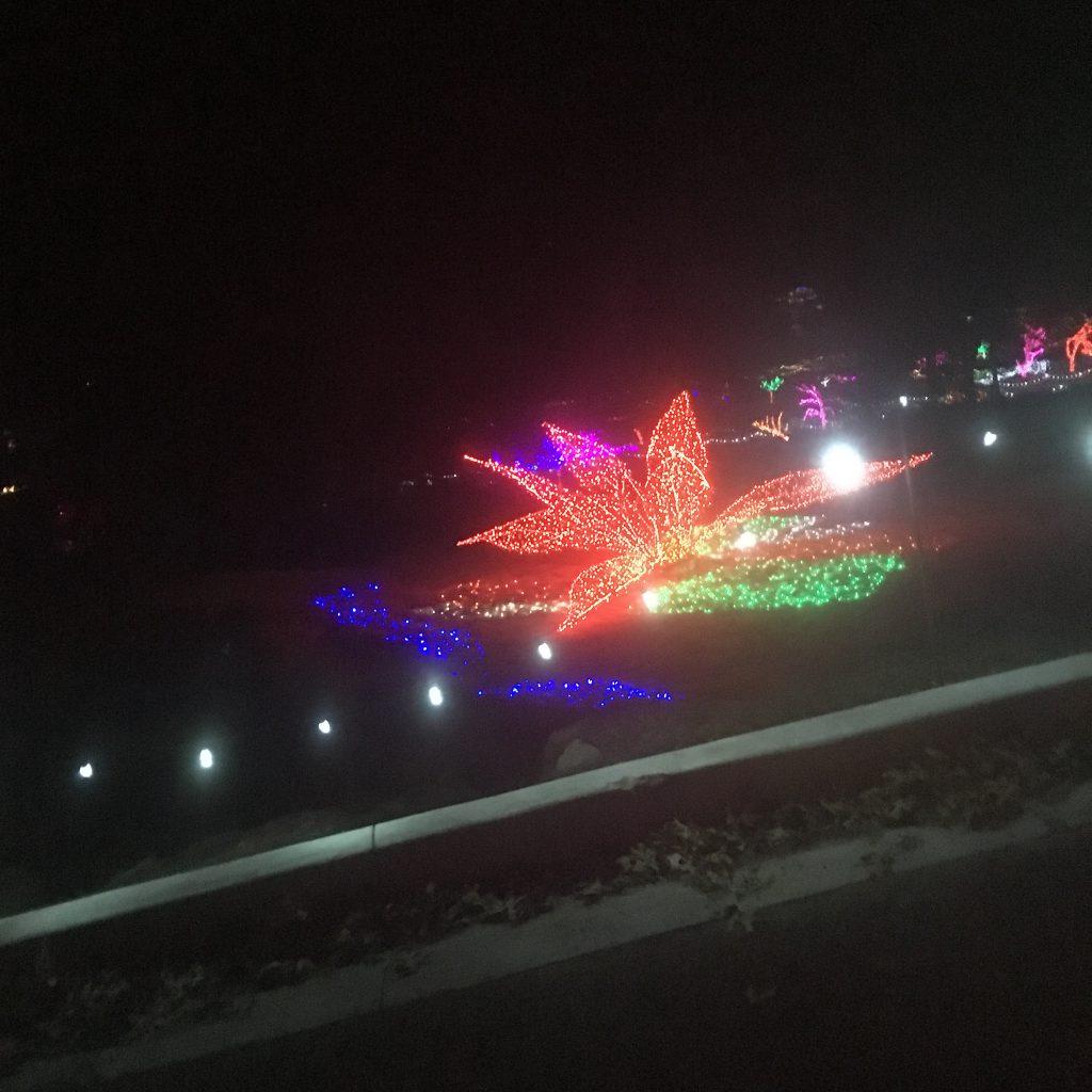 Christmas Light Fun ~ Lifeofjoy.me