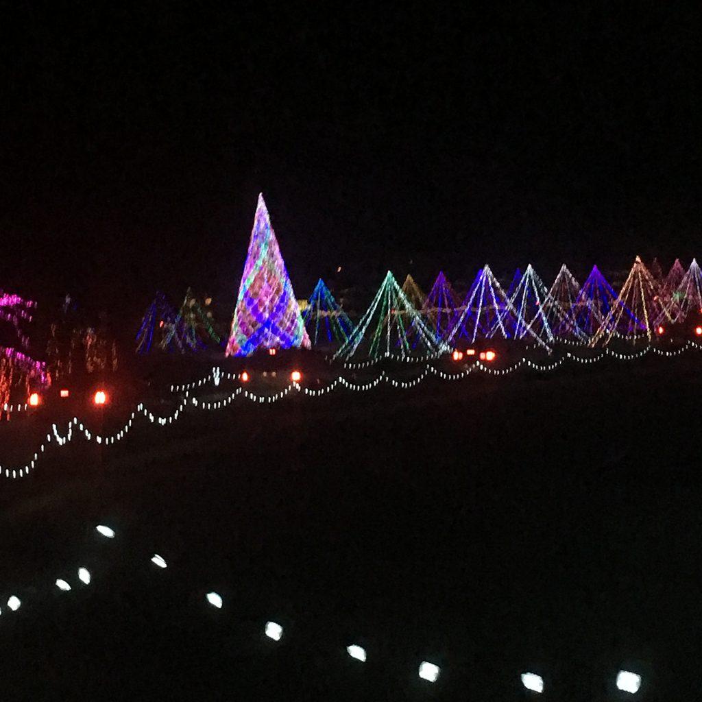 Christmas Fun Lights ~ Lifeofjoy.me