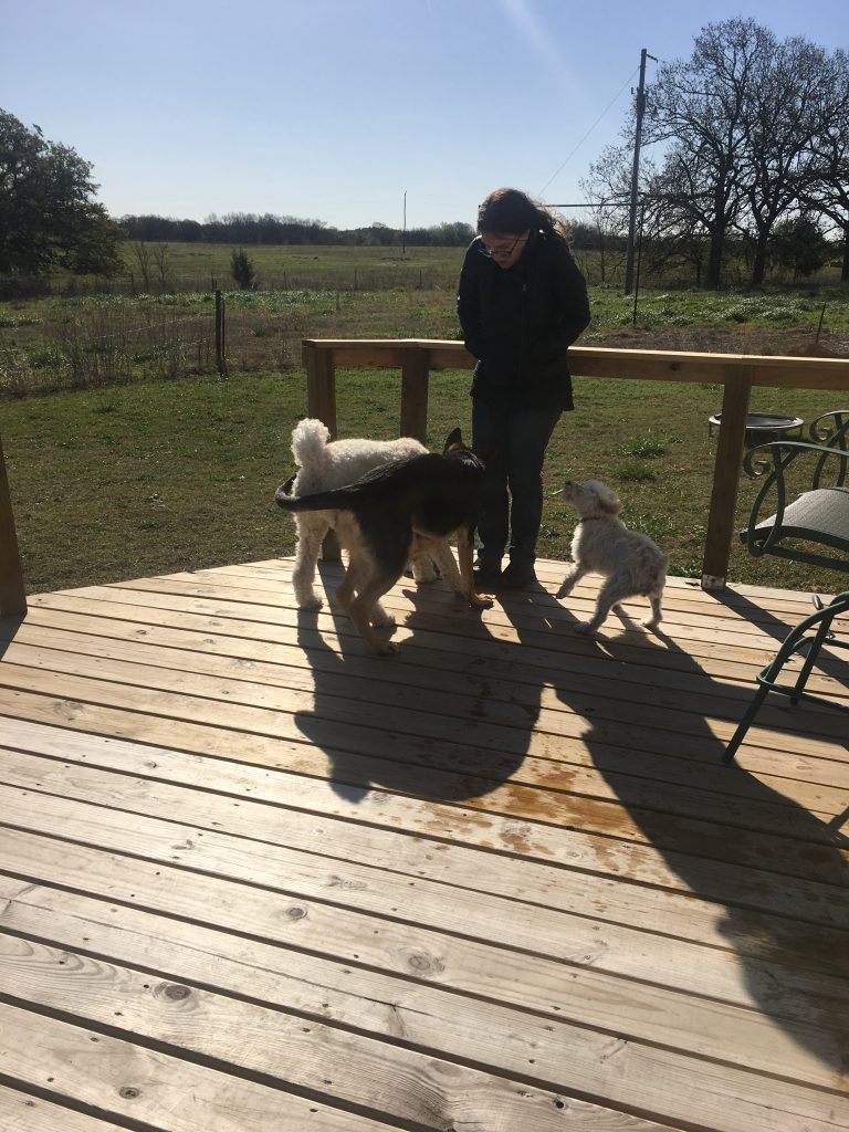 Tiff and Dogs outside ~ lifeofjoy.me