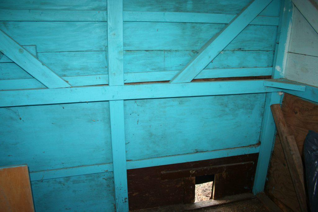 Inside Coop ~ Lifeofjoy.me